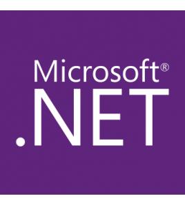 d1-1 .NET